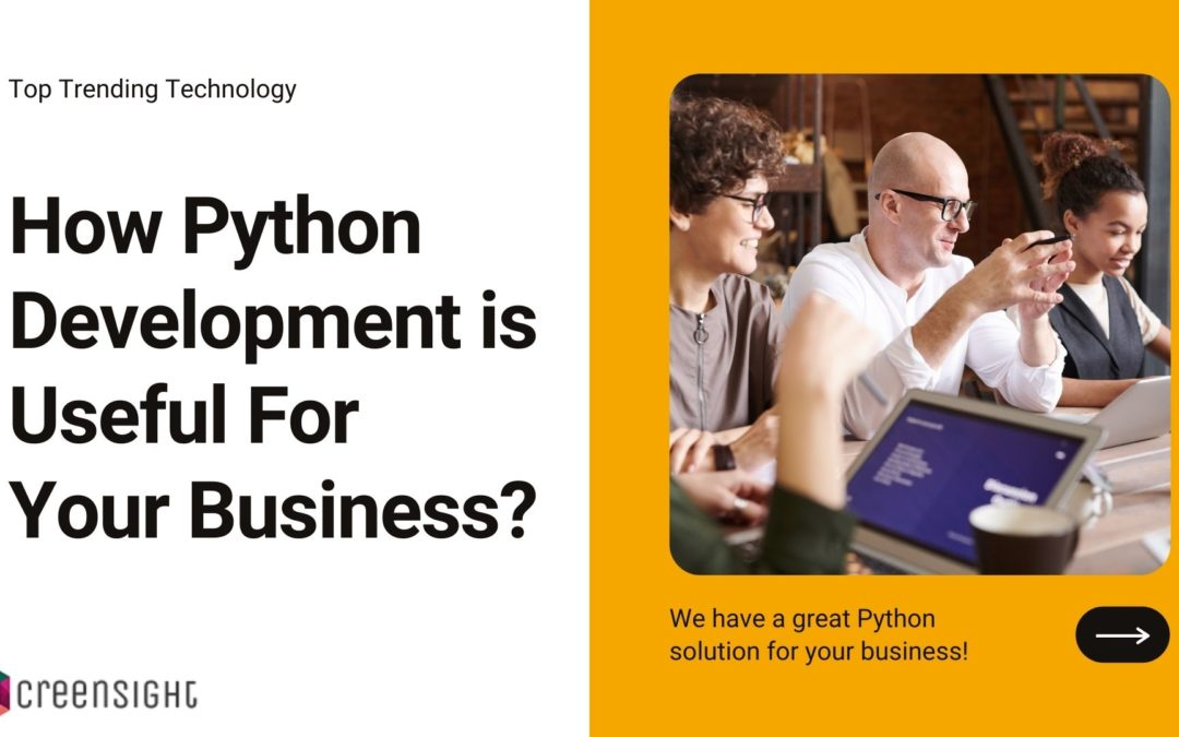 How Python Development is Useful For Your Business?